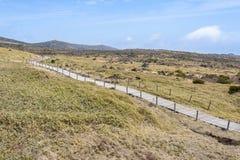 Krajobraz plateau w Hallasan moutain Obraz Stock