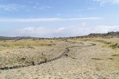 Krajobraz plateau w Hallasan moutain Fotografia Royalty Free