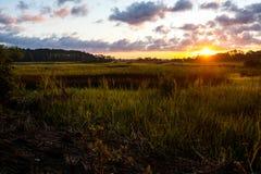 Krajobraz południowy Carolina niskiego kraju bagno przy wschodem słońca z clouday niebem fotografia stock