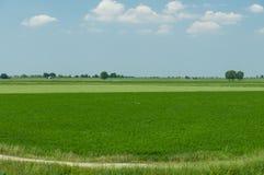 Krajobraz Po ujścia rzeczni otaczający obszary, Scardovari Inle Obrazy Stock