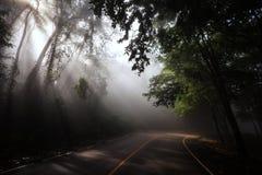 Krajobraz promień synkliny sceniczna koszowa droga Fotografia Stock