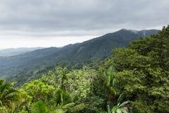 Krajobraz przy El Yunque Krajowym lasem tropikalnym, Puerto Rico, Stany Zjednoczone Obraz Royalty Free