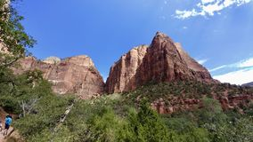 Krajobraz przy Zion parkiem narodowym Fotografia Stock