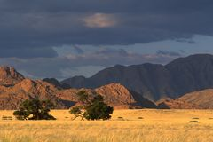 krajobraz pustynny Obraz Stock