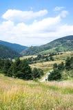 Krajobraz Pyrenees góry Zdjęcie Stock
