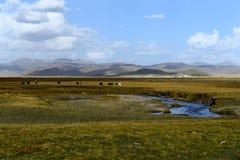 Krajobraz Qilian góry fotografia stock