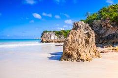 Krajobraz republika dominikańska Zdjęcie Stock