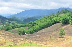 Krajobraz rolniczy pole z górą, rolnictwo scena, Lasowy zniszczenie Fotografia Stock