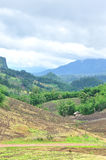 Krajobraz rolniczy pole z górą, rolnictwo scena, Lasowy zniszczenie Obrazy Royalty Free
