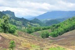Krajobraz rolniczy pole z górą, rolnictwo scena, Lasowy zniszczenie Zdjęcie Royalty Free