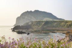 Krajobraz Seongsan Ilchulbong w ranku zdjęcia stock