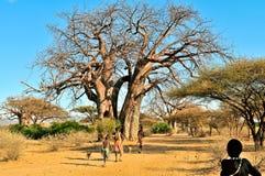 Krajobraz Tanzania zdjęcie royalty free