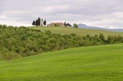 Krajobraz Tuscany Zdjęcie Royalty Free
