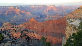 Krajobraz Uroczysty jar, Arizona Obraz Royalty Free