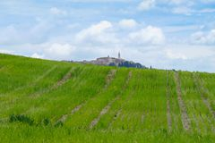 Krajobraz Val d «Orcia z Pienza w tle Val d ?Orcia krajobraz w wio?nie wzg?rza Toskanii Val d «Orcia, Sie zdjęcia royalty free
