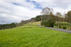 Krajobraz vascos góry Zdjęcie Stock