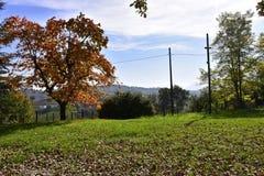 """Krajobraz, Włochy, WÅ 'ochy, krajobraz, gà ³ ry, drzewo, jesieÅ """", pogodny, dzień, Zdjęcie Royalty Free"""