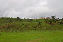 Krajobraz w Alentejo Obraz Royalty Free