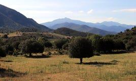 Krajobraz w Balagne, północ Corsica zdjęcia royalty free
