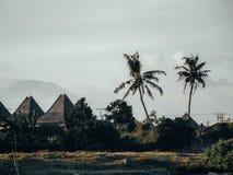 Krajobraz w Bali z willami, palmtrees i vulcano fotografia royalty free