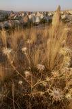 Krajobraz w Cappadocia, Turcja zdjęcia stock