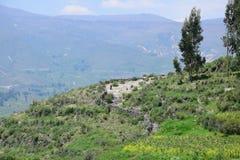 Krajobraz w Colca jarze, Peru obrazy royalty free