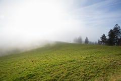 Krajobraz w Czarnym lesie, Niemcy Zdjęcie Royalty Free