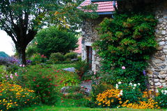 krajobraz w domu Zdjęcia Royalty Free