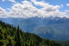 Krajobraz w górach, Olimpijski park narodowy, Waszyngton zdjęcie royalty free