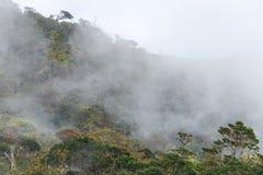 Krajobraz w Horton równiien parku narodowym, Sri Lanka obrazy royalty free