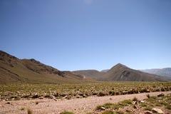 Krajobraz w Jujuy obrazy stock