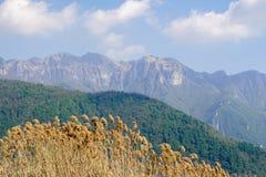 Krajobraz w Lugano, Szwajcaria Zdjęcie Stock