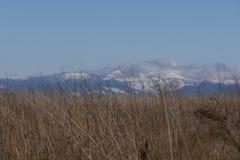 Krajobraz w Oregon Fotografia Stock