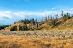 Krajobraz w pelikan dolinie Zdjęcie Royalty Free
