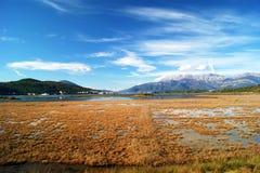 Krajobraz w saltmarsh Obraz Royalty Free