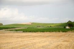 Krajobraz w Sicily, Menfi Ag Obraz Royalty Free