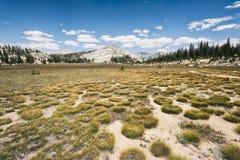 Krajobraz w sierra Nevada góry Zdjęcie Royalty Free