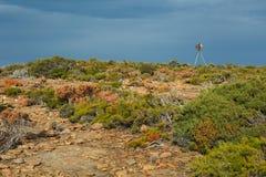 Krajobraz w Tasmania Obrazy Royalty Free