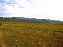 Krajobraz w Uzbekistan Zdjęcia Stock