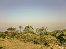 Krajobraz w wybrzeżu Urugwaj zdjęcia stock