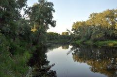 Krajobraz, widok rzeczny Desna zdjęcia stock