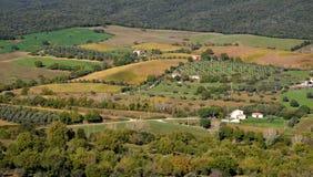 Krajobraz wieś Obraz Stock