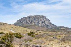 Krajobraz Witse-Oreum w Hallasan Moutain Fotografia Royalty Free