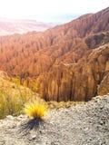 Krajobraz wokoło Quebrada De Palala Dolina z wygryzionymi spiky rockowymi formacjami, El Sillar przepustka blisko Tupiza, Boliwia zdjęcie royalty free