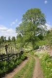 krajobraz wsi zdjęcie royalty free