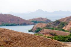 Krajobraz Wyspy w Oceanie w Komodo Obrazy Royalty Free