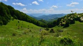 Krajobraz z łąką, drewnianymi domami z pokrywającym strzechą dachem i górami, Zdjęcie Stock