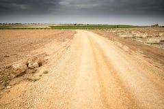 Krajobraz z żółtą gruntową wiejską ścieżką i winnicami Fotografia Stock