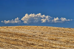 Krajobraz z ładnymi chmurami w Tuscany Zdjęcie Stock