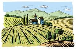 Krajobraz z agrarnymi polami ilustracji